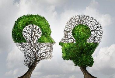 empatía - copia