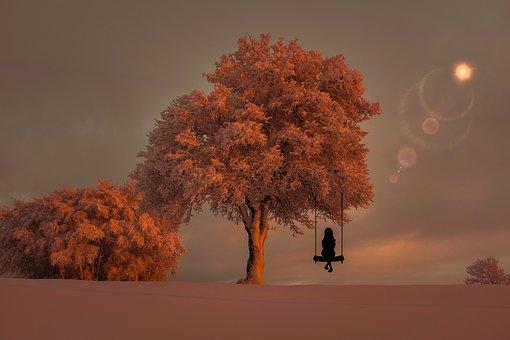 tree-3151608__340